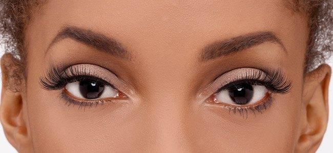 89c9831a516 Exaggerate No. 140 False Lashes   Fake Eyelashes   Eylure