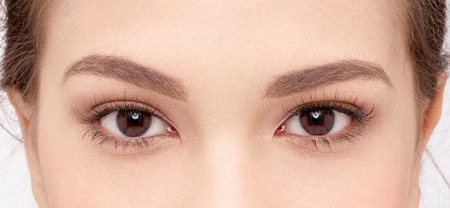 0f1eccc0c6d Naturals No. 020 False Lashes | Fake Eyelashes | Eylure